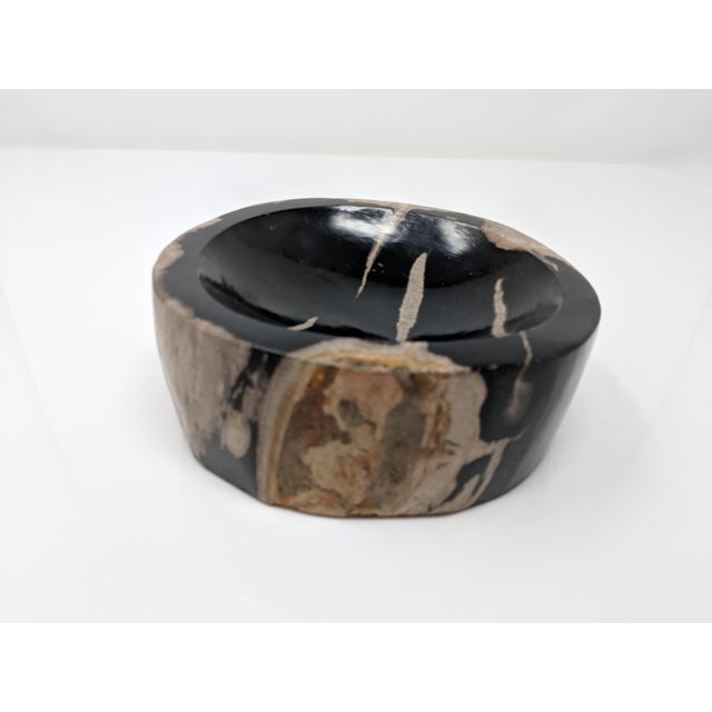 Petrified Wood Bowl, Catchall or Candle Holder For Sale In Providence - Image 6 of 11