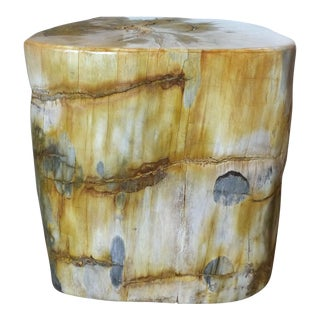 Petrified Wood Trunk Side Table For Sale