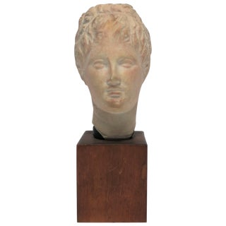 English Sculpture Head or Bust For Sale