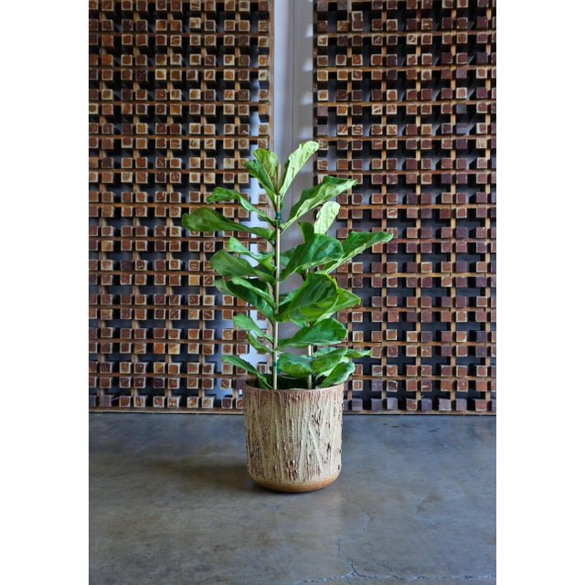 """Mid-Century Modern 1970s David Cressey for Architectural Pottery """"Scratch"""" Texture Planter For Sale - Image 3 of 9"""