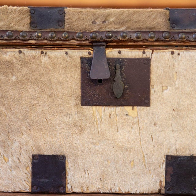 Early 18th Century Antique Cowhide Trunk with Initials DP For Sale - Image 5 of 9