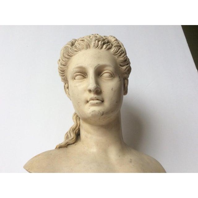 Decorative Proserpina Bust - Image 6 of 10
