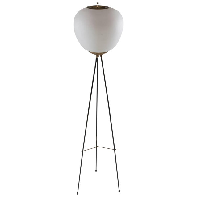 Stilnovo Floor Lamp For Sale