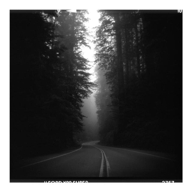 """""""NorCal"""" Toy Camera Image For Sale"""