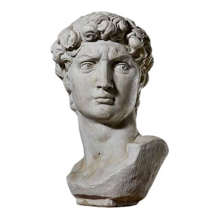 Cast Stone Bust of Michael Angelo's David For Sale