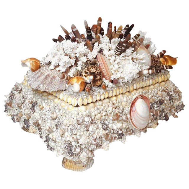 Handmade Exotic Sea Shell Encrusted Large Scale Jewelry Box For Sale