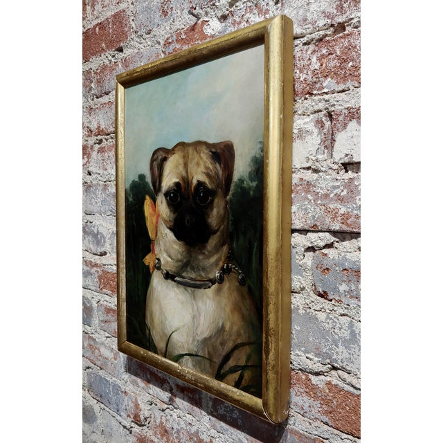 Portrait of a Cute Pug -English School Oil Painting For Sale In Los Angeles - Image 6 of 8