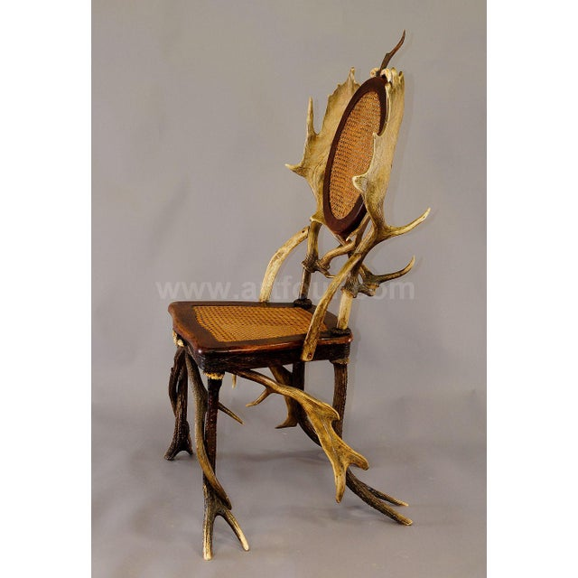Black Forest Antique Cabin Decor Antler Parlor Chair Ca. 1900 For Sale - Image 3 of 6