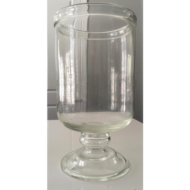 Serena Lily Large Glass Hurricane Chairish