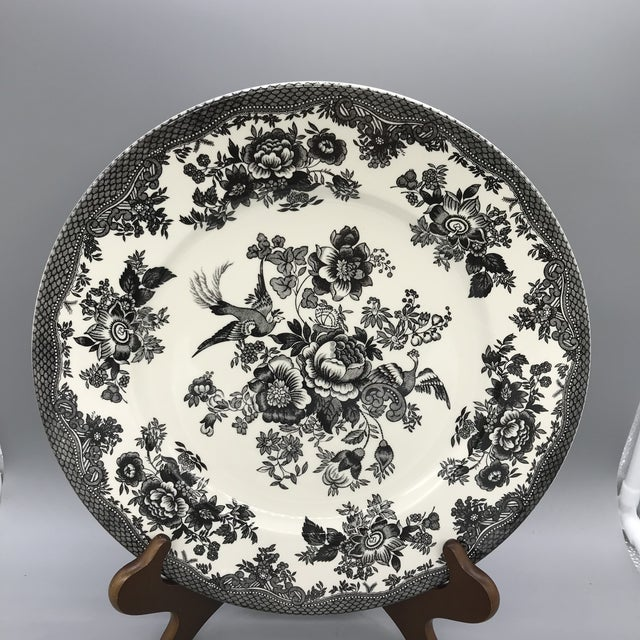 Royal Stafford Asiatic Pheasant Black Chop Plates - Set of 5 For Sale - Image 11 of 13