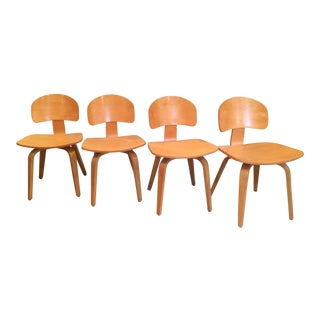 Vintage Thonet Plywood Chairs- Set of 4 For Sale