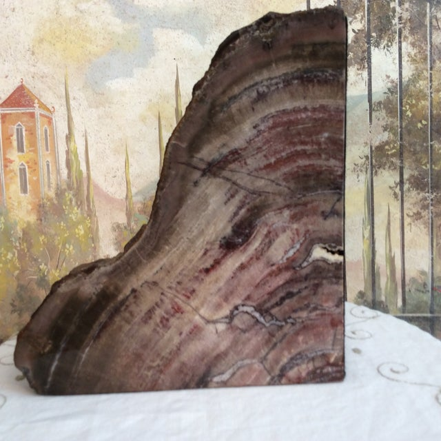 Large Petrified Wood Bookends - a Pair - Image 3 of 11