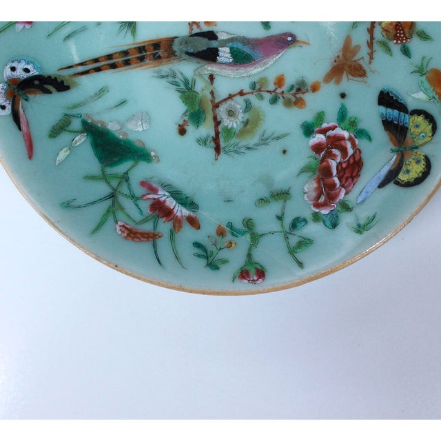 19th Chinese Export Rose Canton Celadon Porcelain Plates - Set of 3 For Sale - Image 10 of 12