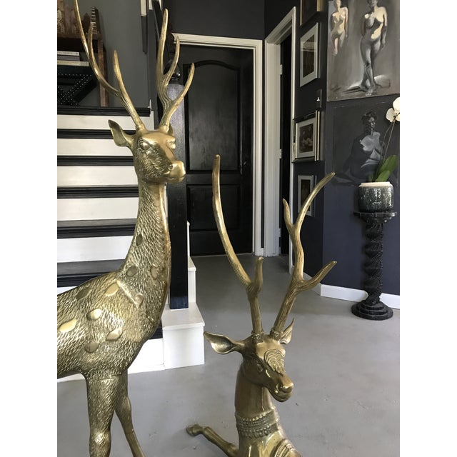 Life-Sized Brass Deer Statues - A Pair - Image 9 of 11