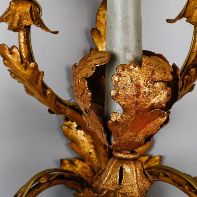 Gold Pair of Tall Five-Light Gilt Metal Leaf Form Sconces For Sale - Image 8 of 9