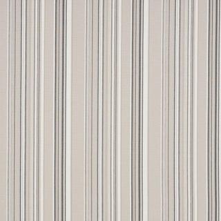 Schumacher Ponderosa Stripe Indoor/Outdoor Fabric in Natural For Sale