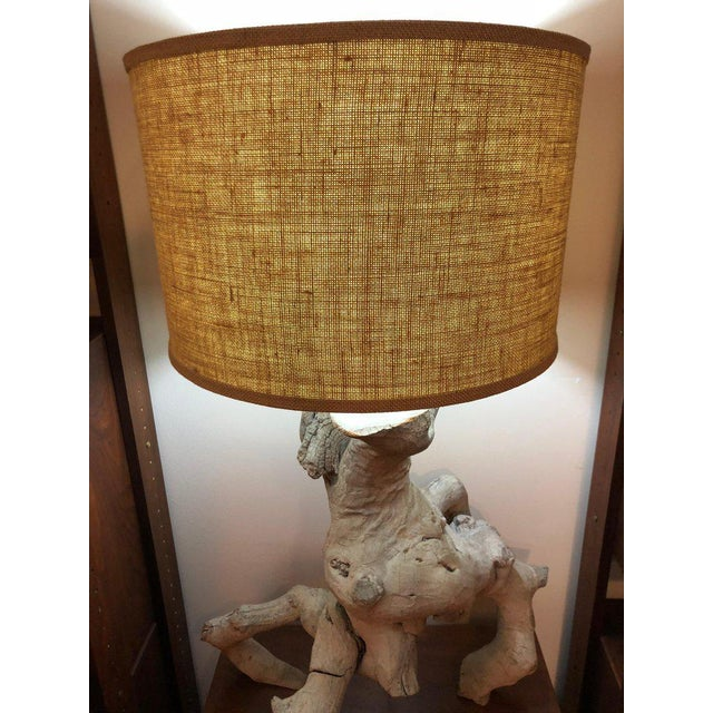 Wood 1960s Vintage Driftwood Lamp For Sale - Image 7 of 13