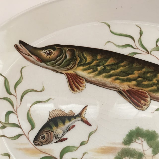 This is a vintage Johnson Bros ironstone fish platter/sturgeon. The piece is from the 1970s.