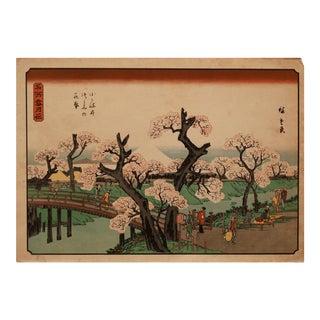 "Utagawa Hiroshige ""Cherry Trees in Bloom"" Woodblock Print For Sale"