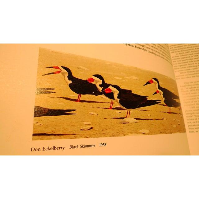 1990s Baby Elephant Illustrated Folio Book, Audubon's Birds of America For Sale - Image 10 of 12