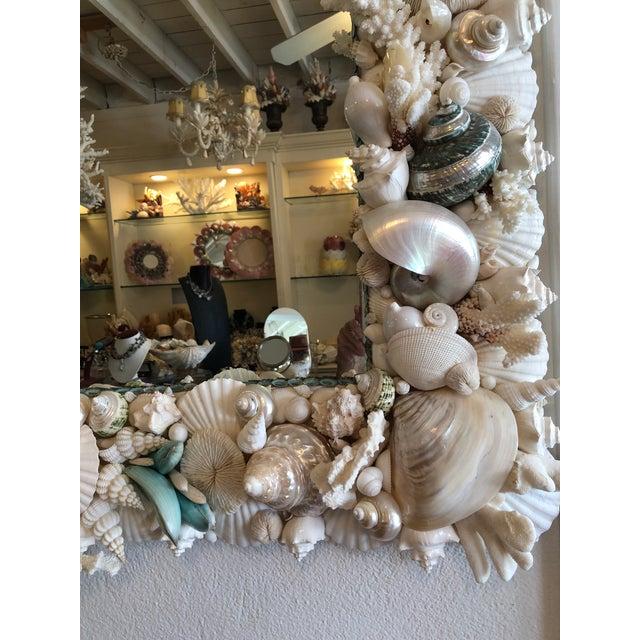 Christa's South Seashells Horizontal Shell Mirror For Sale - Image 4 of 8