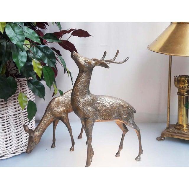 Large Vintage Brass Deers - A Pair - Image 6 of 6