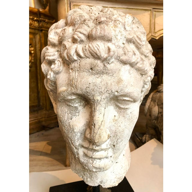 1930s Greek Mid-Century Head of the God Hermes Sculpture For Sale - Image 10 of 13