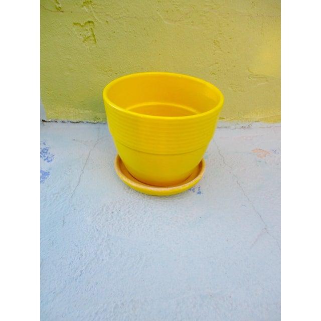 Mid-Century Yellow Ceramic Planter Pot & Iron Tripod Stand - Image 6 of 6