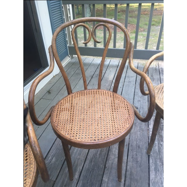 Bentwood Armchairs In The Style of Michael Thonet- Set of 4 - Image 3 of 5
