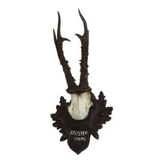 Rustic Roe Deer Mount For Sale