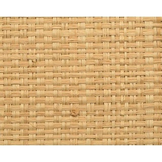 Hinson for the House of Scalamandre Hinson Madagascar - Grand Wallpaper in Natural For Sale