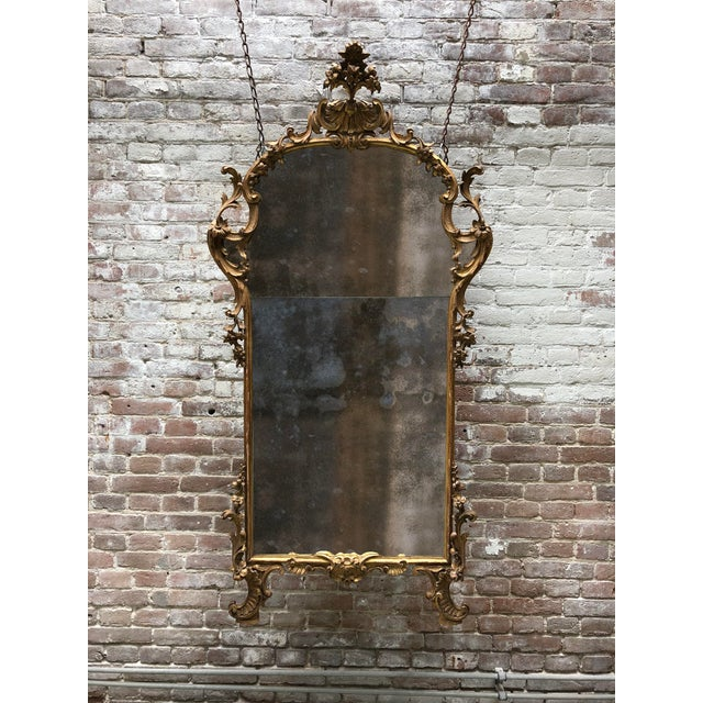 Wood A Fine Italian Rococo Giltwood Mirror, Mid-18th Century,Tuscany For Sale - Image 7 of 8