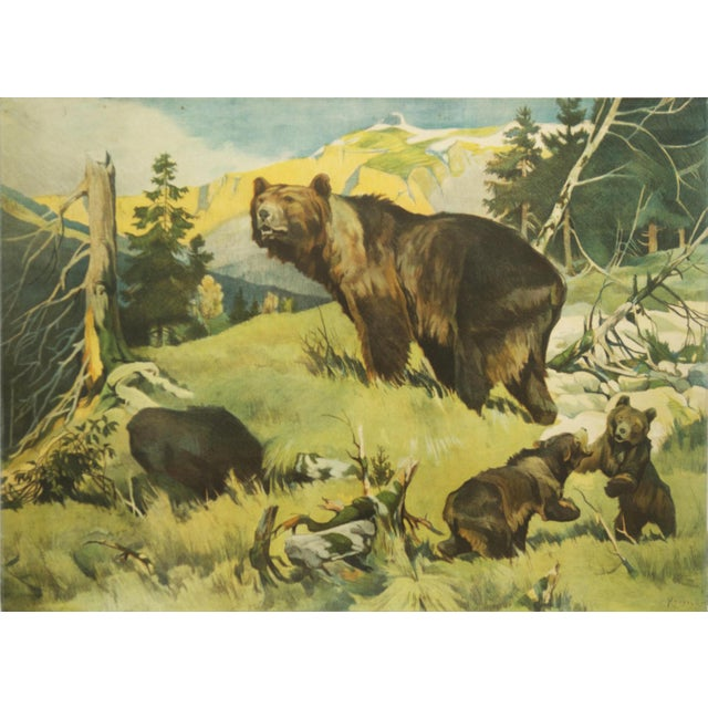 Antique Bear School Poster by Franz Roubal for Leipziger Schulbildverlag, 1930s For Sale - Image 4 of 4