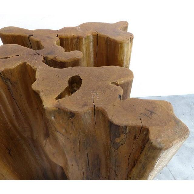 Sculptural Amazon Guaranta Table Base from Brazilian Artist Valeria Totti For Sale In Miami - Image 6 of 9