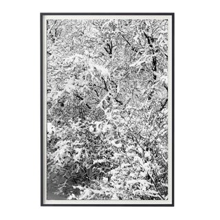 """Jeaneen Lund """"Iceland #14"""" Unframed Photographic Print For Sale"""