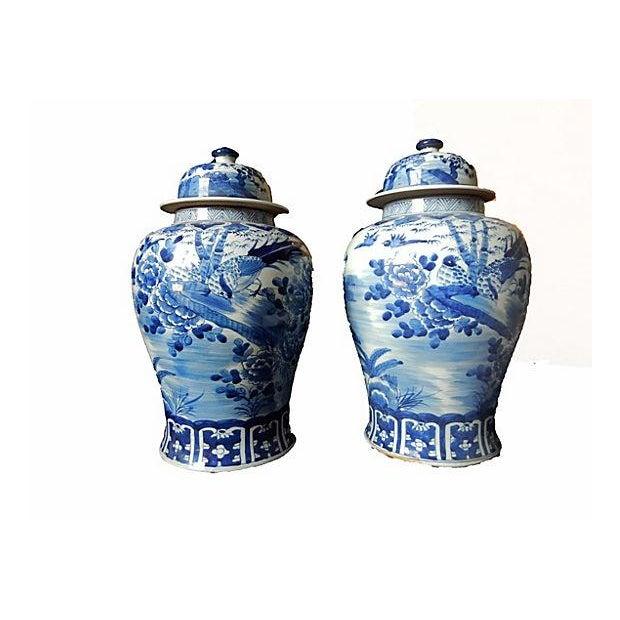 Blue & White Lidded Ginger jars, Pair - Image 2 of 6