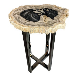 Petrified Wood and Chrome Accent Table For Sale