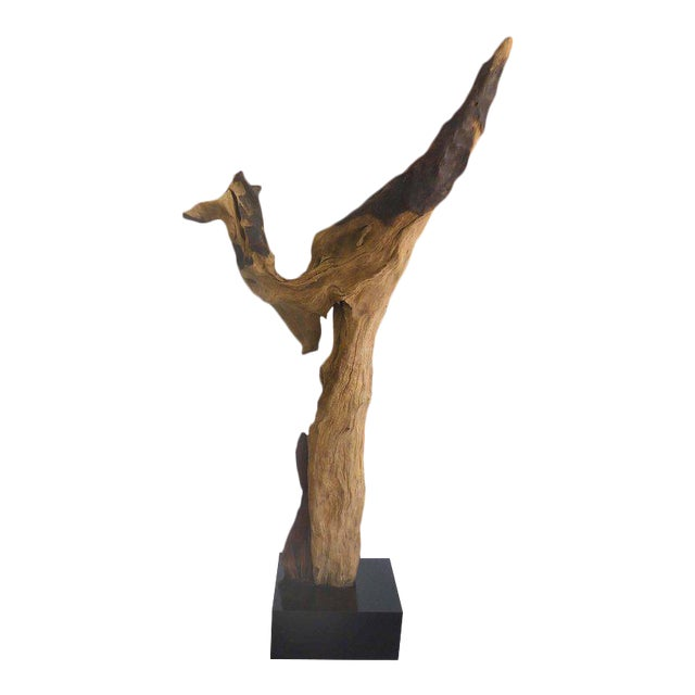"""""""Kangaroo"""" a Petrified Wood Sculpture from the Amazon by Artist Valeria Totti For Sale"""
