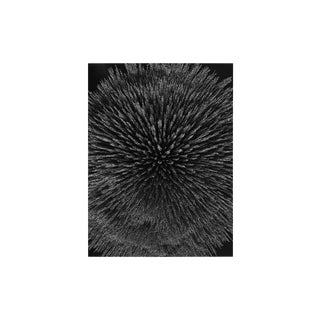 "Seb Janiak ""Magnetic Radiation 99 (Medium)"", Photograph For Sale"