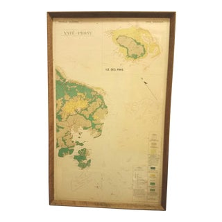 Mid-Century French New Caledonia Islands Geographical Map, Framed For Sale