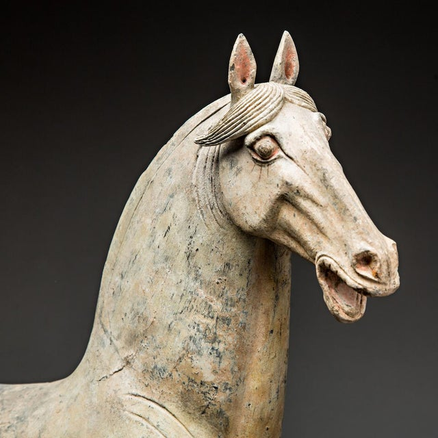 Asian Pair of Tang Horses For Sale - Image 3 of 6