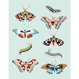 Wondergarden Butterfly Mini Giclee Print by Sarah Gordon For Sale