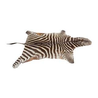 Vintage Zebra Hide Rug For Sale