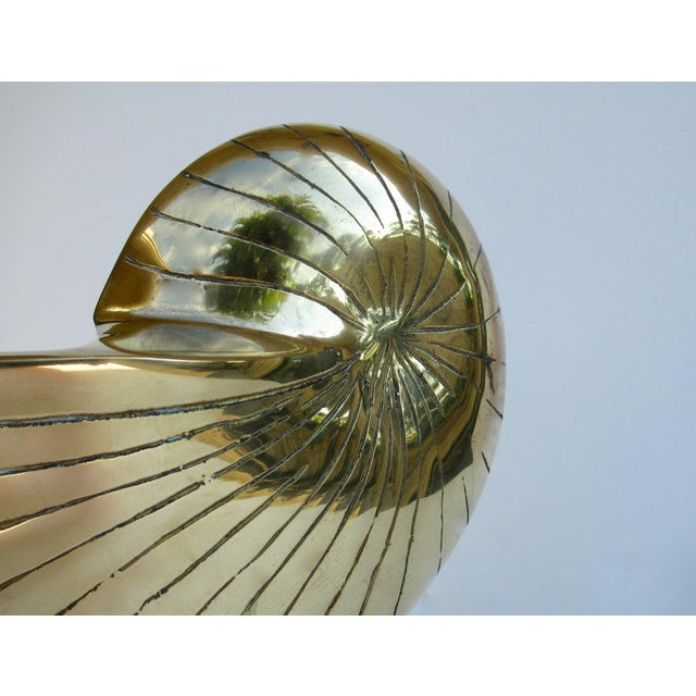 Metal C.1970's Vintage Mid-Century Modern Brass Nautilus Shell Bottle Cooler For Sale - Image 7 of 13