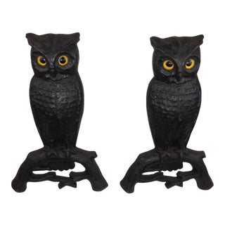 Pair of Cast Iron Owl Andirons For Sale