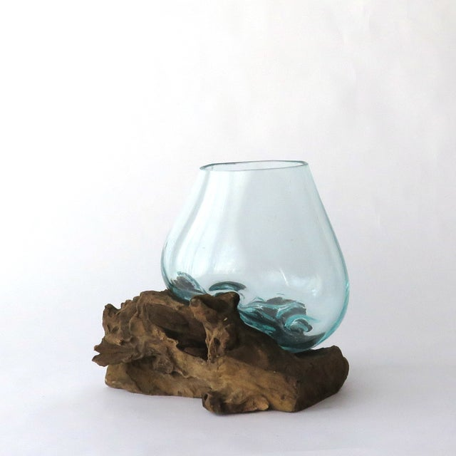 Glass on Teak Driftwood Terrarium - Image 3 of 7