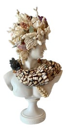 Image of Christa's South Seashells Fine Art