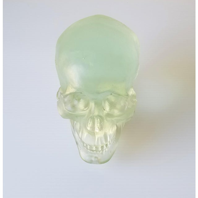 Paul Marioni Sand-Casted Glass Skull For Sale - Image 4 of 8