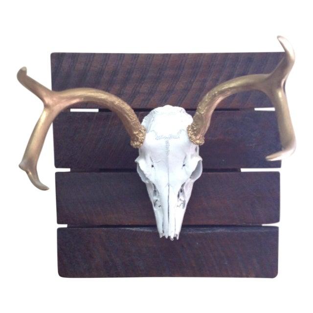 Deer Skull on Reclaimed Wood - Image 1 of 5