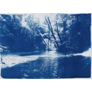 2019 Scandinavian Landscape Enchanted Forest Original Cyanotype on Watercolor Paper For Sale